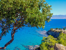 Nice sea view from Akamas Peninsula Royalty Free Stock Photography