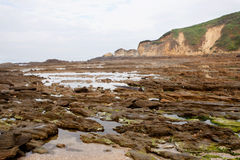 Nice seascape at low tide Royalty Free Stock Photos