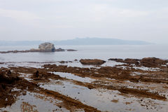 Nice seascape at low tide Royalty Free Stock Images