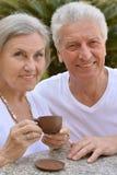 Nice senior couple Royalty Free Stock Image