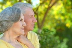Nice senior couple Stock Image