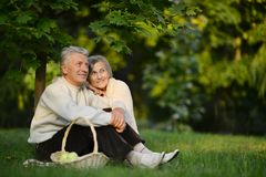 Nice senior couple Royalty Free Stock Photo