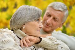 Nice senior couple Royalty Free Stock Images