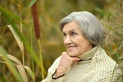 Nice Senior woman Stock Image