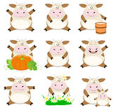 Nice set of cartoon cows Royalty Free Stock Photo