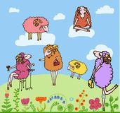 Nice set of vector cartoon sheep Stock Photography