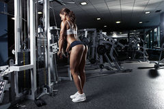 Nice sexy woman doing triceps workout Stock Photography
