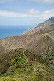 Nice sikter längs drevet på TFEN-134 i Tenerife Arkivfoto