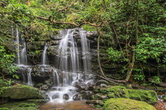 Nice small waterfall in forest Stock Photography