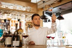 Nice smart man looking at the wine glass. Perfect colour. Nice smart man looking at the glass while checking the colour of wine royalty free stock image
