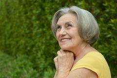 Nice smiling old woman Royalty Free Stock Photo