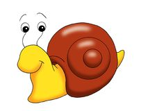 Nice snail Stock Images