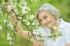 Nice som ler den gamla kvinnan Arkivbilder