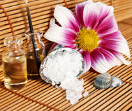 Nice spa arrangement Stock Photography