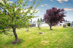Nice spacious Backyard garden with fruit trees. Nice spacious Backyard garden with fruit trees and white house in the background stock photos