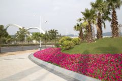 Nice spring flower bed on street side Nanning city. Nice spring flower bed on street side, development city Nanning, south of China stock photos