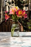 Flowers in the vase stock photography