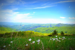 Nice spring mountain view Stock Images