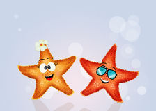 Nice starfishes couple Stock Image