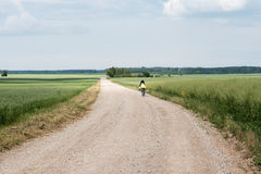 Free Nice Summer Day In Latvian Countryside. Royalty Free Stock Photography - 63905997