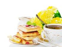Nice sunny breakfast Royalty Free Stock Photo