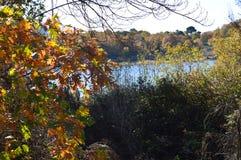 Nice Sunny Day To Enjoy From de Kust van het Pajarero-Reservoir door de Bomen wordt gezien die 14 november, 2015 Aard, Reis, royalty-vrije stock foto
