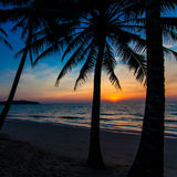 Nice sunset.  Tropical sunset Stock Images