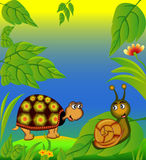 Nice terrapin and snail in herb Royalty Free Stock Photo
