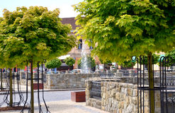 Nice town square with many green trees during hot summer day Stock Photo