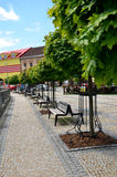 Nice town square with many green trees during hot summer day Stock Images