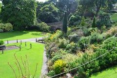 Nice trädgård royaltyfri bild