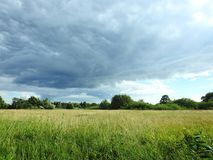 Trees, grass and beautiful cloudy sky, Lithuania Royalty Free Stock Images