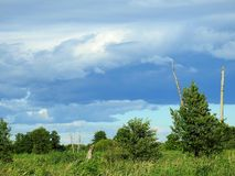 Trees, grass and beautiful cloudy sky, Lithuania Stock Photography