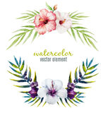 Nice tropical frame Royalty Free Stock Images