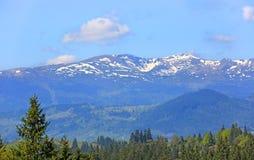 Nice view on Carpathians Stock Photos