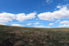 Nice view of the field. With clear skies Royalty Free Stock Photo