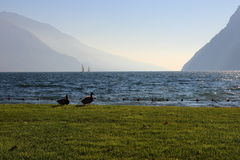 Nice view of the lake surrounded by mountains Royalty Free Stock Image