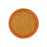 Nice View Mustard Seed Stock Images