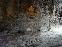 Nice view on the narrow walking way in autumn. In the evening, under the lamp, Nice view on the narrow walking way in autumn just beside the sea in Espoo Finland Stock Photos
