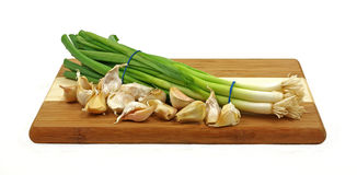 Nice view onions garlic Royalty Free Stock Image