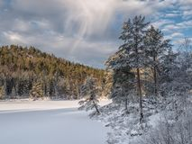 View over the cold snowy lake in evening light Royalty Free Stock Image
