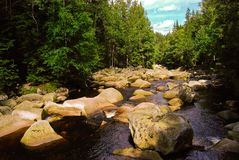 Stones on river in green forest, Czech Republic, August royalty free stock photo