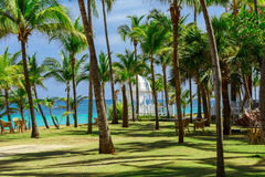 Nice view of tropical garden with white gazebo and tranquil ocean background Stock Photos