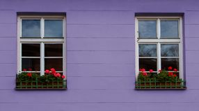 Nice view of two windows with reflections and red flowers in pots Stock Photo