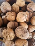 Nice walnuts on black background. Close up stock images