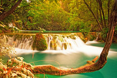 Nice waterfall Stock Image