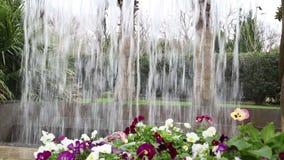 Nice Waterfall design in Dallas Arboretum stock video footage