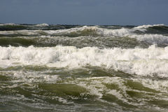Nice waves royalty free stock photography
