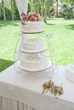 Nice wedding cake Royalty Free Stock Images