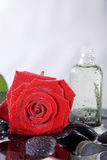 Nice wellnes close shot with red rose and stones Stock Image